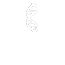 Inflammation Systemic Enzymes